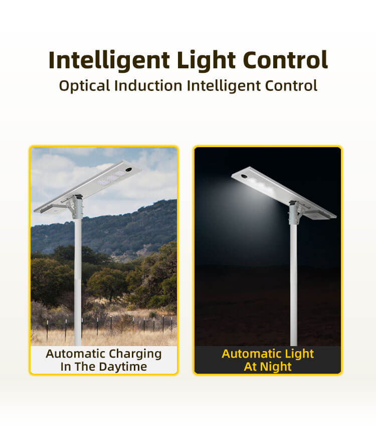 All in one solar street light 100